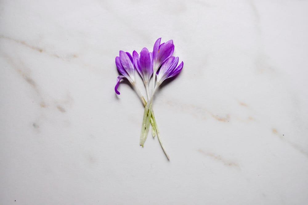 La Petite Fleur Cocktail